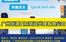 澳洲集装箱海运多少钱专业海运双清到门DDU