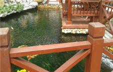 锦鲤鱼池过滤设计,品质生活技术打造
