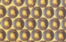便宜的001x7阳树脂,鹤壁市201x7阴离子交换树脂厂期待您的咨询