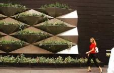 什么是植物墙?敢这样设计才叫强