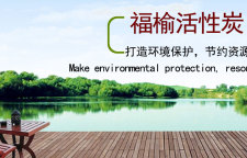浅析上海粉末活性炭的种类与应用