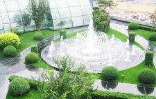 珠海办公室植物租摆专业施工团队_语景绿化
