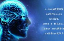 天津河东专注力培训机构,才智大脑助孩子茁壮成长