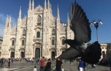 圣玛丁意大利米兰、佛罗伦萨14日游学招募