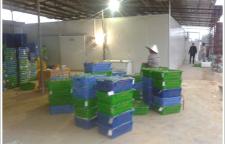 惠裕康公司新鲜蔬菜食材及时送达,保证饭菜的美味和营养
