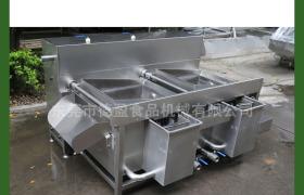 中央厨房设备多功能水果蔬菜洗菜机DYZ-200B