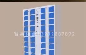 电子存包柜电子存包超市寄存柜存包储物柜商场存包柜存包柜12门