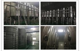 云南省高品質自釀啤酒設備價格批售