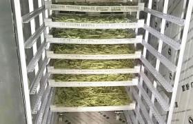 廠家定制菊花烘干機 金絲黃菊烘干箱 金銀花烘干機  花類烘干設備