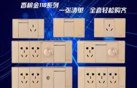 新款118型墻壁開關家用插座開關單雙控開關面板五孔插座