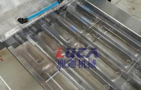 南京鹿迦DPP-260Z留置針鋁塑泡罩包裝機