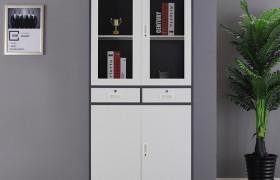 大器械文件柜 钢制财务柜 环保美观大气文件柜 支持定制 厂家直销