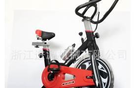 家用运动健身车动感单车室内自行车训练室内健身器材踏步机mini