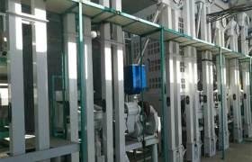 免陶米高鈣米大米深加工設備稻谷脫皮制米機全套大米色選機設備