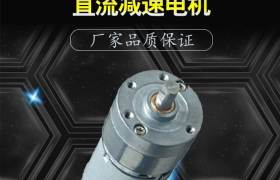 BY32-385大力矩12V攪拌機護理床調速電機