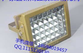 仓库用LED防爆灯40W