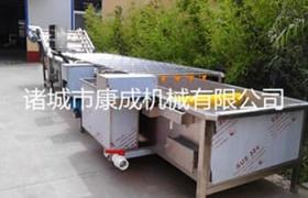 食用菌清洗機設備