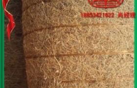 新品抗冲植草毯植被毯植生毯 厂家直销 量大从优