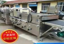 直供多功能氣泡清洗機雙槽清洗設備304不銹鋼果蔬清洗機